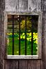 N09 (SentiuntPhotography) Tags: spring flower door window bar grass wall wood
