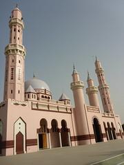 SenegalFromDeltaSaloumToMbour023 (tjabeljan) Tags: mbour moskee mosque termite termiet boabab senghor senegal africa afrika