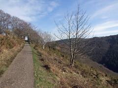 Hunter's Path, Teign Gorge - highest point seen from west (Philip_Goddard) Tags: europe unitedkingdom britain british britishisles greatbritain uk england southwestengland devon dartmoornationalpark drewsteignton teignvalley teigngorge hunterspath views scenery landscapes valley trees heath