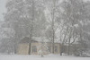 Февраль 2018 (oliveshadow) Tags: snow city winter weather badweather much moscow russia editorial snowfall trees plants cloudy landscape park drift
