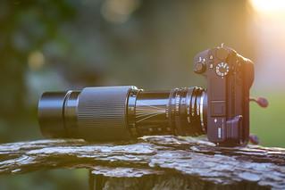 Canon nFD 70~210mm ƒ/4 Macro on SONY ⍺6500