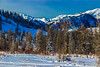 Wyoming-GrandTetonNP-Christmas2015-133.jpg (Chris Finch Photography) Tags: landscapephotography snow utahphotographer tetons chrisfinch photographs landscapephotographs grandtetonnationalpark wyoming jacksonlake christmas wwwchrisfinchphotographycom chrisfinchphotography