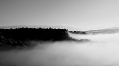 Lightness ...(explore) (Raquel Borrrero) Tags: mist misty niebla paisaje landscape whithe blackandwhite blancoynegro wb aire atmósfera athmosphere montaña mountain nikon day d3200 sky cielo neblina explore monte mount arboles trees