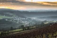 Foggy Urphar (Claudia G. Kukulka) Tags: urphar mist fog nebel village dorf valley tal vineyard weinberg