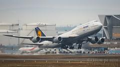 D-ABYM (tynophotography) Tags: lufthansa 7478i dabym 5starhansa livery 748 7478 747 5 star hansa fra eddf