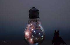 Bulbman (nicoheinrich86) Tags: batman lego bulb lights bokeh