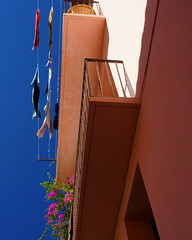 Daily Flags (Francoise100) Tags: 66 blooming flowers surplomb hanging vertical street lane alley saturated linge balcon balcony cityscape streetscape ruelle méditerranée farben fauve bleu blue sky ocre couleur colors collioure catalunya catalogne catalonia payscatalan france frankreich vivid