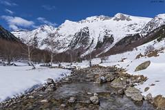 Val de Molières (sostingut) Tags: d750 tamron nikon pirineos invierno valle bosque río naturaleza cordillera