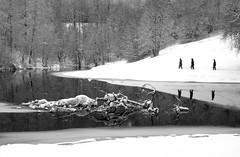 Riverside Walking (bjorbrei) Tags: winter snow ice frost water river stream shore trees trail track walking hiking people akerselva akerriver kjelsås oslo norway