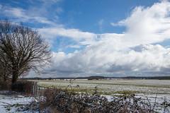 IMG_6766 (mollyblobs) Tags: cambridgeshire castor location unitedkingdom arable snow