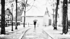 Lonely woman under the snow (Caropaulus) Tags: silhouette woman blur bokeh blackwhite sony alpha7 minolta rokkor snow winter