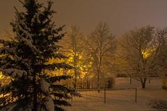 Der Winter ist zurück (berndtolksdorf1) Tags: jahreszeit winter schnee nachtaufnahme outdoor