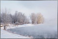 _1110043 (geelog) Tags: alberta bebogrove calgary fishcreekpark shannonterrace sikomelake ab canada bowriver winter steam fog cold