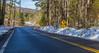 Ecotourists Down The Road (John Kocijanski) Tags: sign leadinglines road snow winter eagles canon24105mmf4l canon5dmkii sullivancounty