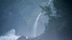 Waipio (147) (BoyUtot) Tags: waipiovalley waipiofalls waimea surfing hiking trekking dronephotography mavic panasonicgh1 hawaii bigisland lumix 100300mm travel nature landscape seascape honokaa ramesesmendoza