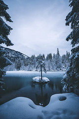 It's only cold if you're standing still. (Bokehm0n) Tags: landscape nature vsco explore flickr earth travel folk 500px lake winter tree snow calm photography outdoors wilderness globe switzerland
