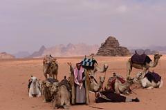 Wadi Rum Desert, Jordan, January 2018 812 (tango-) Tags: giordania jordan middleeast mediooriente الأردن jordanien 約旦 ヨルダン desert wadirum