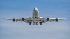 Cargolux | B747-800 | LX-VCB (Anthony Kernich Photo) Tags: cargolux lxvcb airplane aircraft airplanepicture airplanephotograph airplanephoto closeup longlens plane aviation jet olympusem10 olympus olympusomd commercialaviation planespotting planespot aeroplane flight flying airline airliner airport cargo heavy freighter boeing 747 boeing747 cargoplane jumbojet singaporechangiairport singapore b748 747800