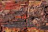 "Petrified forest national park, Arizona (sensaos) Tags: united states america 2014 travel sensaos arizona usa ""petrifiedforestnationalpark""petrifiedforestnationalparkunitedstatesnationalparknavajoapachenortheasternarizona""petifiedwoodpetrifiedwood ""petrified forest national park"" petrified park navajo apache northeastern ""petified wood steppe badlands holbrook ""national monument"" wood"""