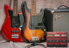 My rig (Alan Pope) Tags: bassguitars fender musicalinstruments