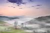 Westweg Etappe 9 | 4 (Wolfgang Staudt) Tags: westweg schwarzwald fernwanderweg pforzheimbasel etappe9 kalteherberge lachenhaeusle glashoefe schweizerhof tuerkenlouisschanze hoehenwanderweg heiligenbrunnen titisee fahrenberg natur wald mittelgebirge wanderweg badenwuerttemberg deutschland wandern aussichtsreich waldweg