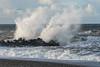 Splash (hanschristian_nielsen) Tags: ferringstrand ferring vesterhavet northsea sea jutland jylland denmark sky cloud beach groyne seagull