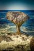 Kannesteinen (Askjell) Tags: kannesteinen måløy norway scenery seascape sognogfjordane vågsøy nature rock rockformation