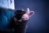 The Drinking Horn Rabbit (Thomas TRENZ) Tags: drinking explore nikon tamron thomastrenz blau blue detail erkundung fotografie hase horn iamnikon nikonaustria photography rabbit spielzeug toy trinkhorn