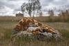2017-09-15_14-27-12 Lichen Rock (canavart) Tags: lichen rock nanton alberta canada prairie clouds storm fields couttscentre couttscentreforwesterncanadianheritage bokeh