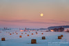 March full moon setting (susannevonschroeder) Tags: wisconsin agriculture landscape moon sunrise winter visualscreatives