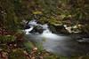 _ATP3662- (anahí tomillo) Tags: nikon nikond7500 naturaleza nature rio river agua water asturias bosque woods sigma 1750f28 ndfiltro