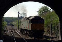 "47376 ""Freightliner 1995"" GWR Cheltenham Racecourse 170408 (jim40135) Tags: class47 brushtype4 47376 gloucestershirewarwickshire gwr freightlinergrey"