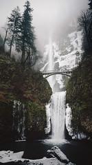 multnomah (manyfires) Tags: film analog 35mm nikonf100 waterfall oregon pnw pacificnorthwest gorge columbiarivergorge fog mist moody trees winter ice snow landscape multnomah multnomahfalls