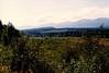 2015.165.004b - Photos of Nikkei Mountain (Cumberland Museum) Tags: nikkeimountain cumberland comoxvalley vancouverisland britishcolumbia cumberlandmuseum scenery