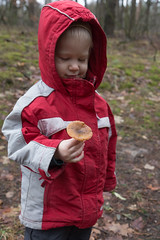 unexpected gift (glorund) Tags: daytime forest mushroom outdoor outdoors style time glorundblogspotcom