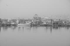 Poole in a fog (Tony Shertila) Tags: england gbr poole pooletownward unitedkingdom geo:lat=5071180718 geo:lon=198223829 geotagged fog water boats transport britain dorset reflection dock quay