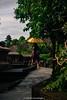 _DSC4724 (UdeshiG) Tags: bali indonesia asia waterfalls uluwatu seminyak tanahlot nikon ubud kuta paddy dogs balidogs travel traveltheworld