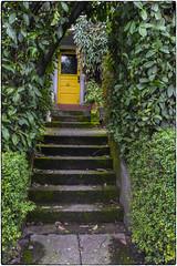 Yellow Door (NoJuan) Tags: fremont seattlewa washingtonstatedowntowns sonya7withmanualfocuslens sonya7ii manualfocuslens nikkorlens fotodiox fotodioxadapter door yellowdoor yellow