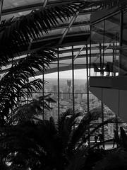 (yeezusr96) Tags: sky garden blackandwhite uk skygarden london