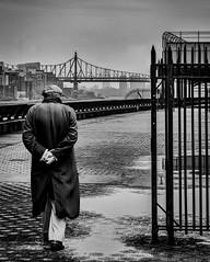 The Solitary Stroller (J MERMEL) Tags: older man walking bridge promenade iron gates nyc east river