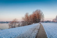 Les abords de l'étang Laveyssière, au Port-aux-Cerises (_Jérôme_) Tags: d90 portauxcerises nikon eau leverdusoleil froid freeze arbres lac paysage aube ciel ice landscape hiver cold sky winter extérieur sigma1020 vigneuxsurseine neige draveil îledefrance france fr laveyssière