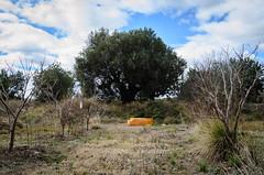 Una mirada diferente... (retver) Tags: spain abandoned debris ecoligical landscape problem ruralphotography streetphotography