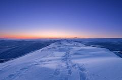 Bieszczady National Park (Mirek Pruchnicki) Tags: bieszczady winter morning bluehour mountains ziemiasanocka national park landscape travel snow frost subcarpathian podkarpacie pentax samyang14f28