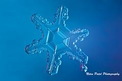 IMG_3277 (nitinpatel2) Tags: snowflakes winter snow macro crystal nature nitinpatel