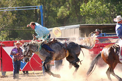 this'll hurt... (tom.edwards1974) Tags: rodeo myrtleford victoria australia bronc bronco horse cowboy man summer colour color athlete sport myth