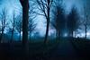 Moody night (Roderick van der Steen) Tags: sonya7s amsterdam a7s zeissmilvus50mmf14distagon night fog highiso contrast zeiss milvus1450 zf2