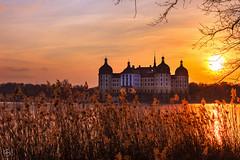 Winterzeit (Dirk Hoffmann Fotografie) Tags: schloss moritzburg sachsen germany saxon sunset sun sunlight sundown winter see