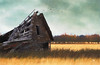falling apart on the inside (rockinmonique) Tags: composite barn hay alberta old weathered golden yellow green kirstinfrank moniquew canon canont6s tamron copyright2018moniquewphotography