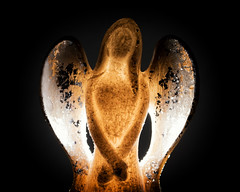 My Favourite Novel (Fiction) (Helena Johansson 71) Tags: backlit angel macro macromondays nikond5500 d5500 nikon myfavouritenovelfiction object fotoarte art artphotography