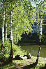 Берёзы (SorniNai) Tags: river wood forest tree boat nature trip ural middleural russia берёза лес урал река чусовая landscape лодка 35mm 35mmfilm 35mmfilmphotography film filmphoto